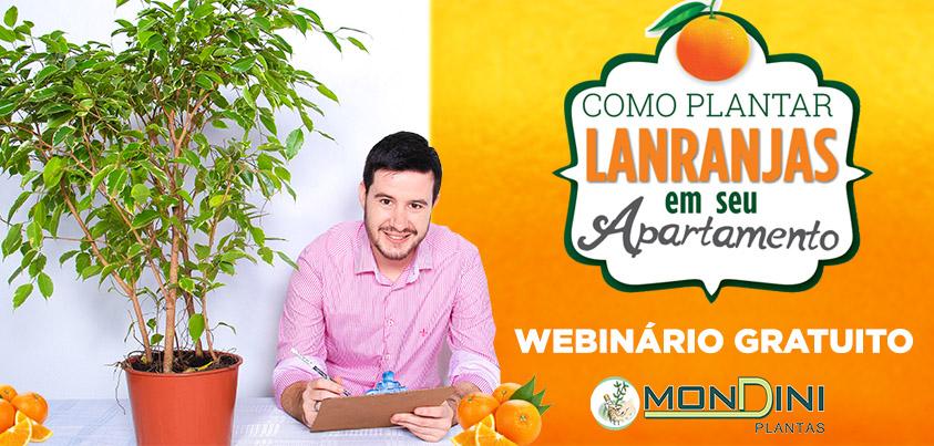EBOOK Aprenda a CULTIVAR Plantas Cítricas !
