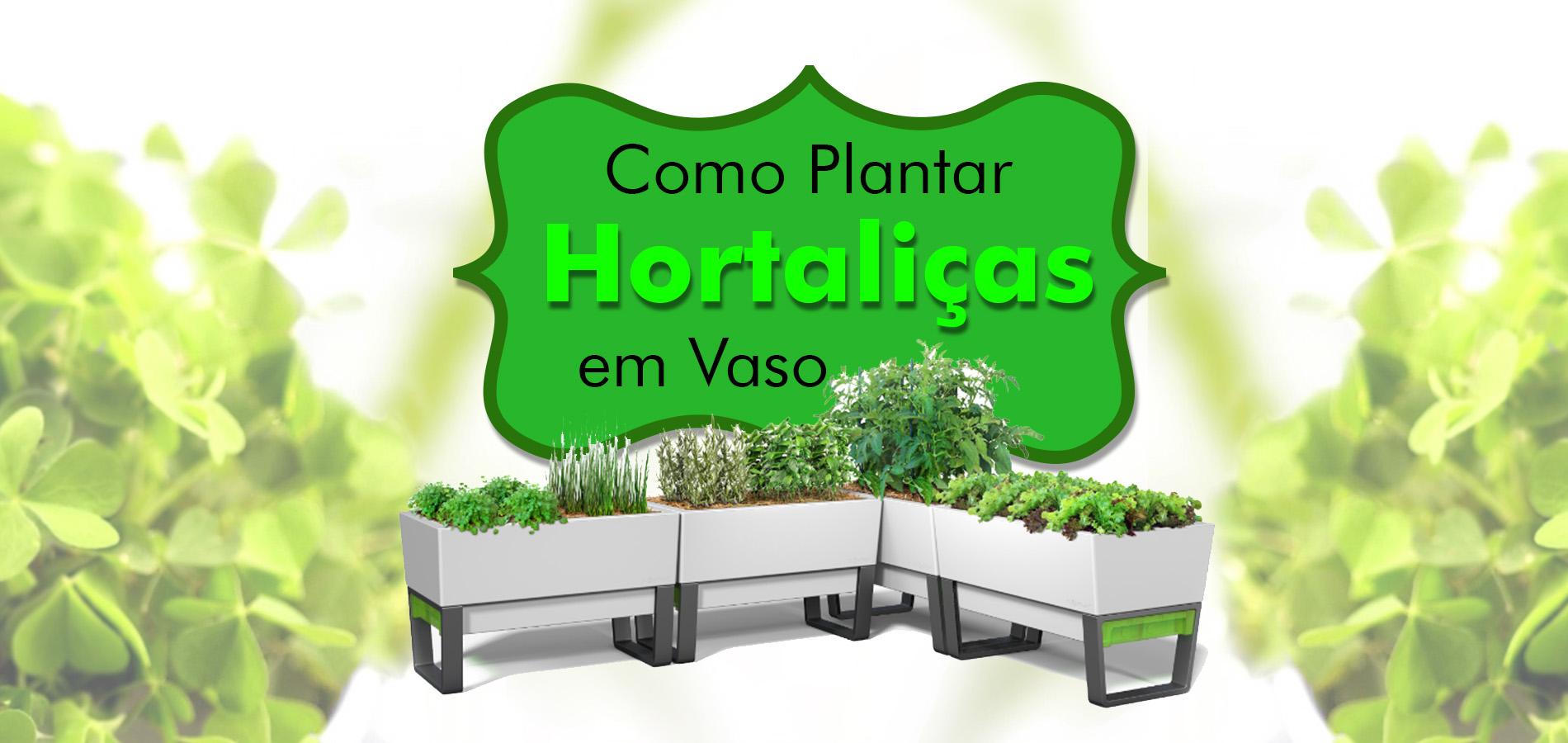 Curso sobre Cultivo de Hortaliças