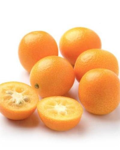 Detalhes do produto Muda de Laranja kinkan doce