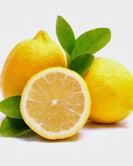 Muda de limão siciliano - Foto 2