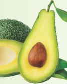 Detalhes do produto Muda de Abacate