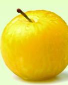 Detalhes do produto Muda de Ameixa Amarelinha
