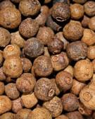 Detalhes do produto Muda de Pimenta da Jamaica