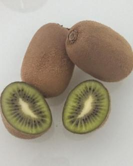 Muda de Kiwi Monty (Fêmea)