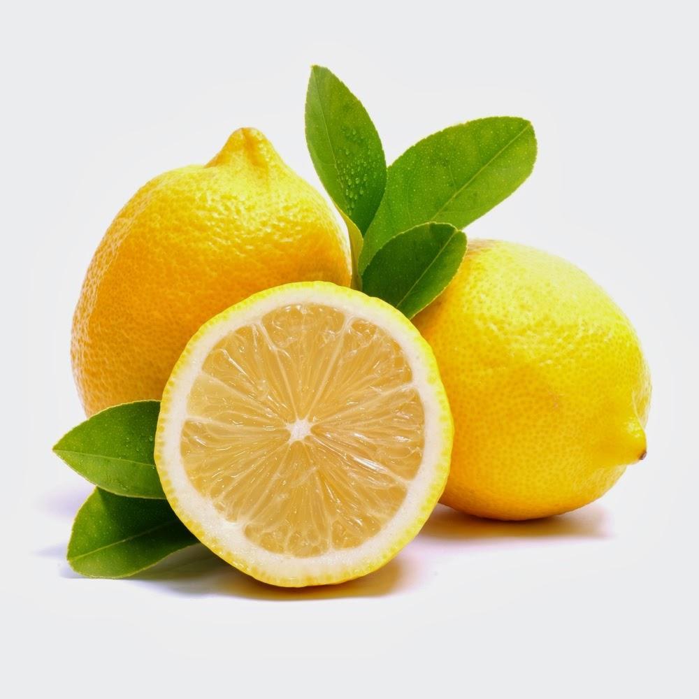 Muda de limão siciliano